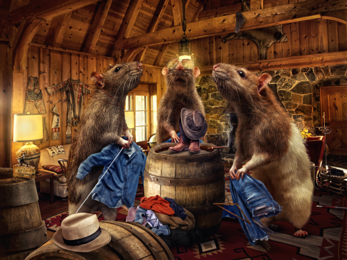 three_blind_rats_by_flewdesigns
