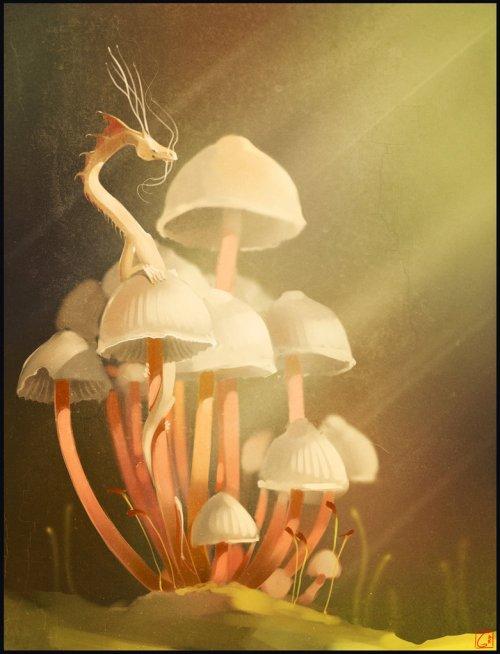 mushroom_s_dragon_by_gaudibuendia